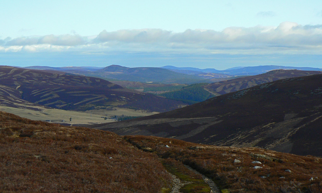 Looking down Strathdon