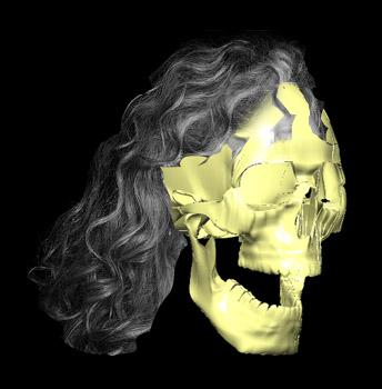 jaw-bone