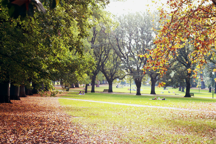 autumn park melbourne