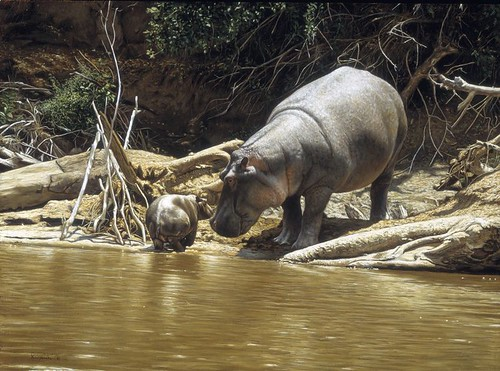 "'Hippo Mother and Baby' oil on board 12"" x 16½"