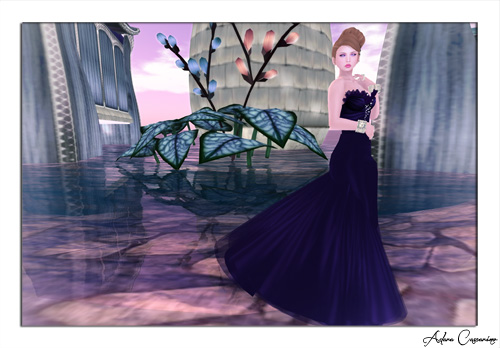 Fashion For Life - Part IV - 500