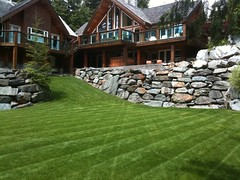 Super Natural Landscapes Lawn