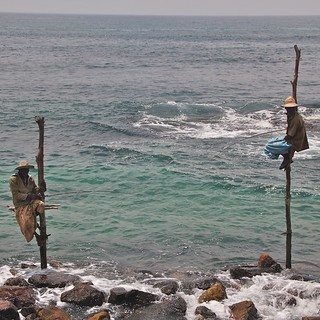 Retired Stilt fishermen, Weligama, Sri Lanka
