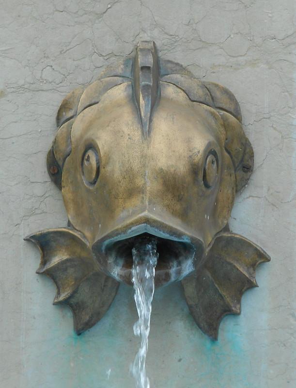 pesce con acqua, Virgilio Milani, Rovigo