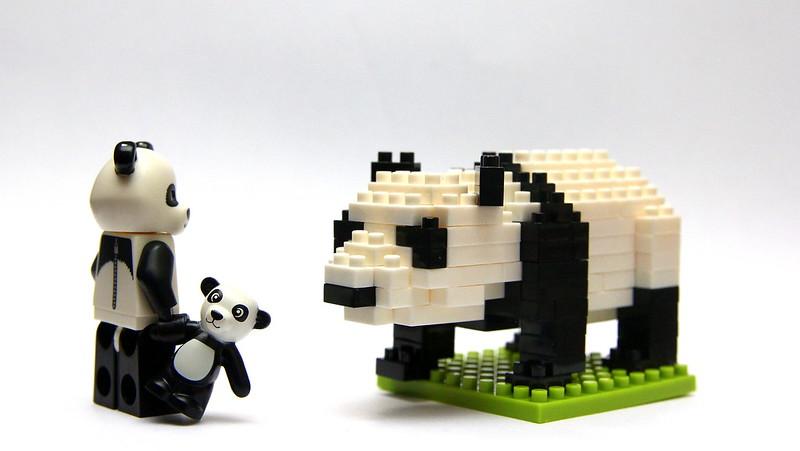Panda, Remember Your Forebears