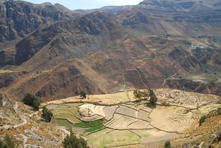 Los Andes (Perú)