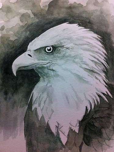 Bald Eagle WIP 3 90 mins