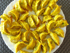 Vegetarian Pumpkin dumplings (素煎餃/ 鍋貼)