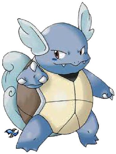 Pokémon de Agua: Wartortle (Kameil)