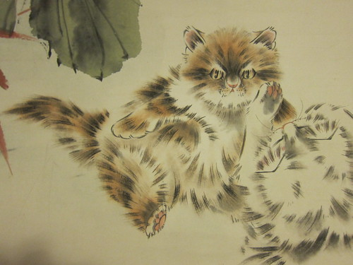 fluffy feline