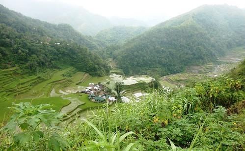 Luzon-Bangaan (98)
