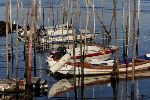 barcos da Ria - Ria boats by @uroraboreal