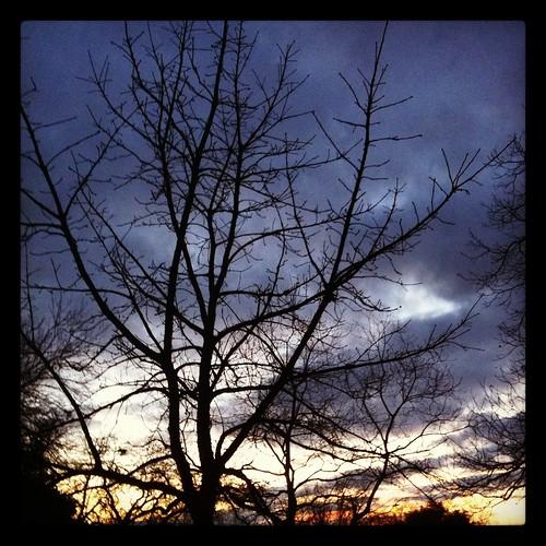 sunset samespotforayear