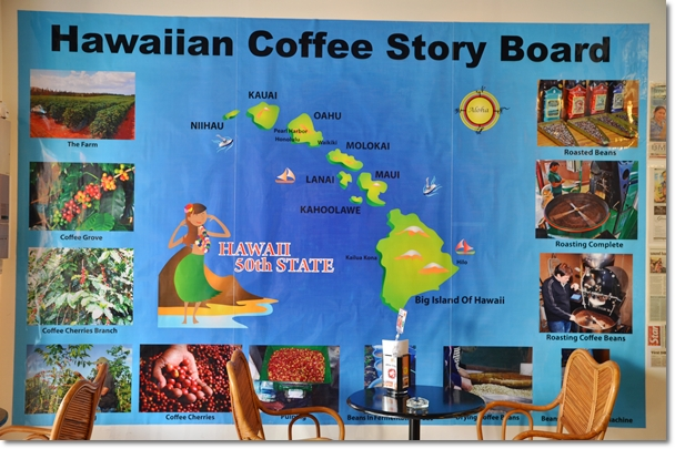 Hawaiian Coffee Story Board