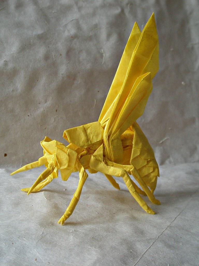 Wasp 20 By Kamiya Satoshi Folded Artur Biernacki