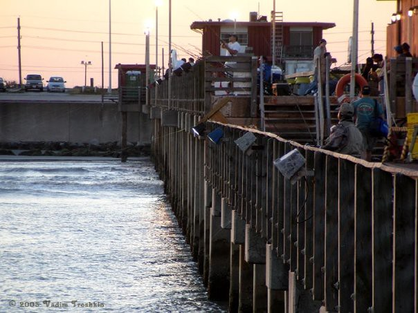 Fishing from the 91st street pier explore for Galveston fishing pier report