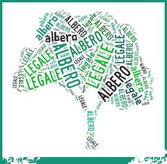 albero legale 2