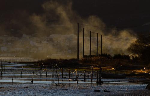 Delta de l'Ebre #2 by BertlivePhoto