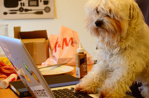 Moogle being a nerddog