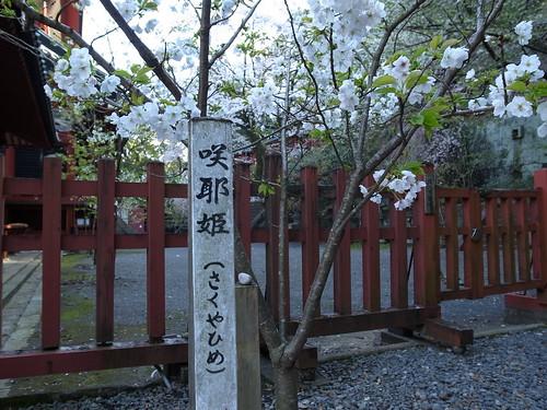 静岡浅間神社 咲耶姫2012