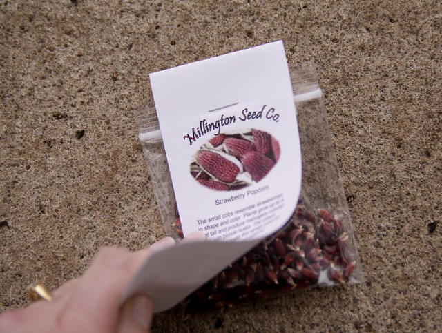 millington seed co. - strawberry popcorn