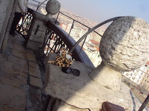 Galata toronyban