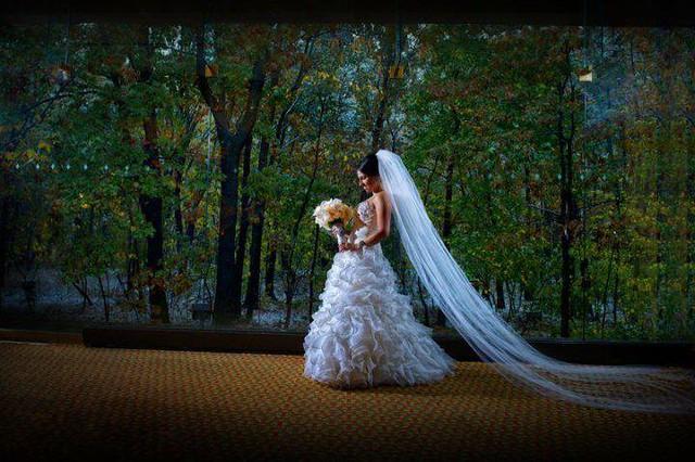 Bridal Styles Bride Jackie, Cathedral veil