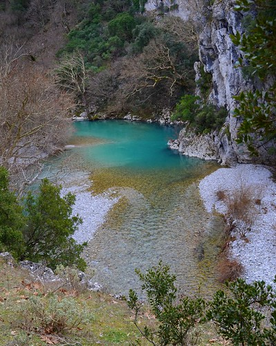 nature river greece vegetation epirus ελλάδα φύση ποτάμι βλάστηση ήπειροσ εθνικόσδρυμόσβίκουαώου nationalparkofvikosaoou