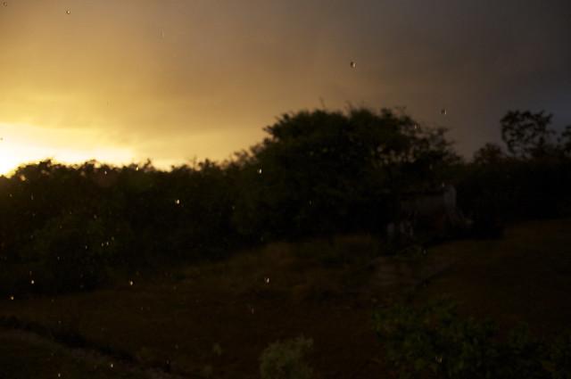 sunny raindrops