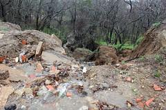 trail(0.0), stream(1.0), soil(1.0), landslide(1.0), geology(1.0), forest(1.0), wilderness(1.0), rock(1.0),