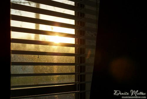 116: Sun peaking through