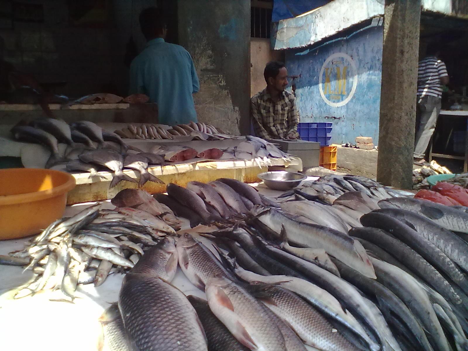 Fish stalls, Russell Market, Bangalore   Explore ahminotep ...
