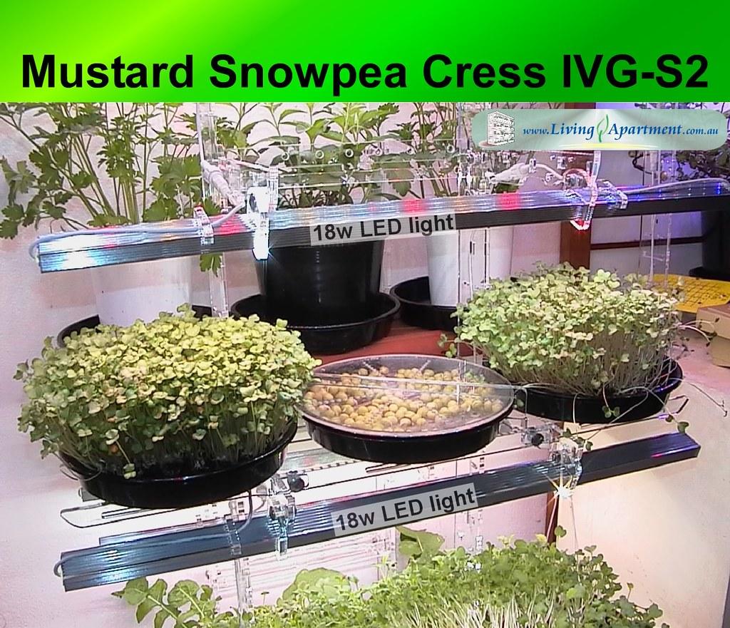 Great Indoor Vegetable Garden 1024 x 881 · 559 kB · jpeg