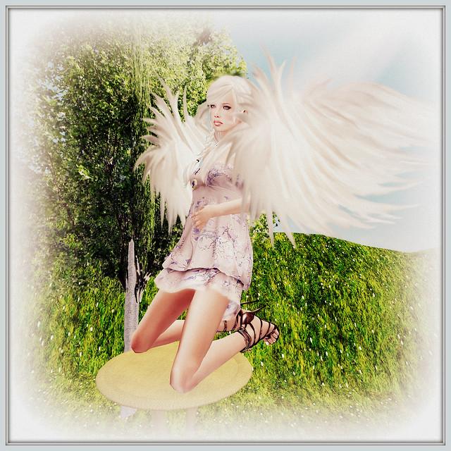 I'm Like A Bird, I'll Only Fly Away