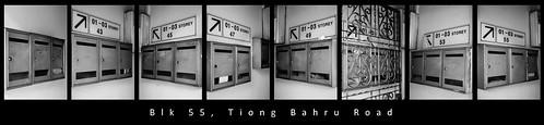 Blk 55, Tiong Bahru Road