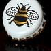 Bee Cap (124/365)