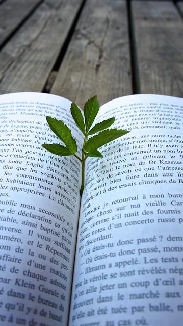 anteketborka.blogspot.com, livre8