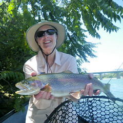 Beautiful Lower Sacramento River springtime trophy Rainbow