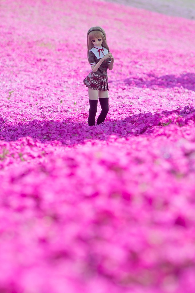 Pinkish Flower Garden