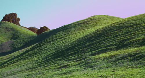 The Green Hills of Spring