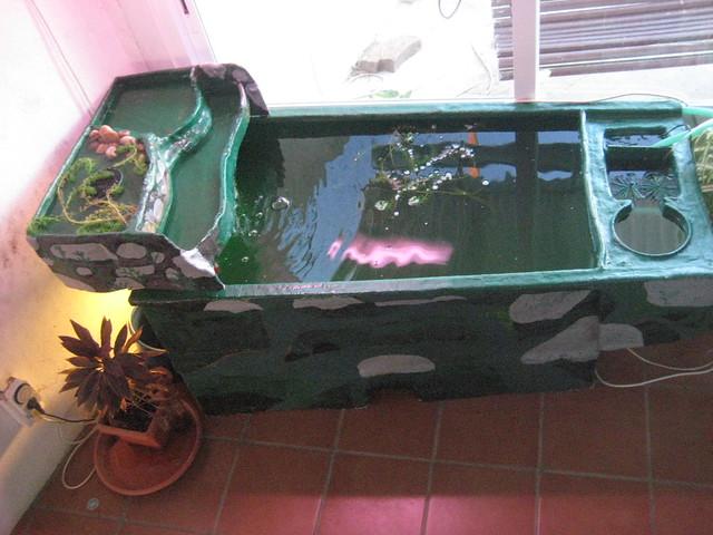 Ver tema proyecto estanque terraza de for Filtro para estanque de tortugas