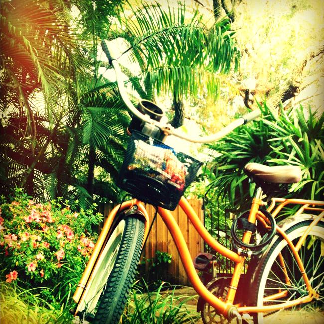 bikeparadise