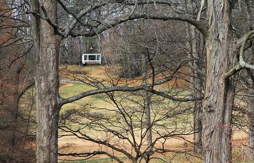 nature frelinghuysenarboretum morriscounty