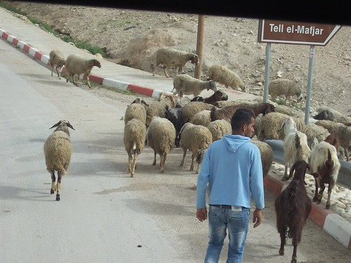 Jericho traffic jam