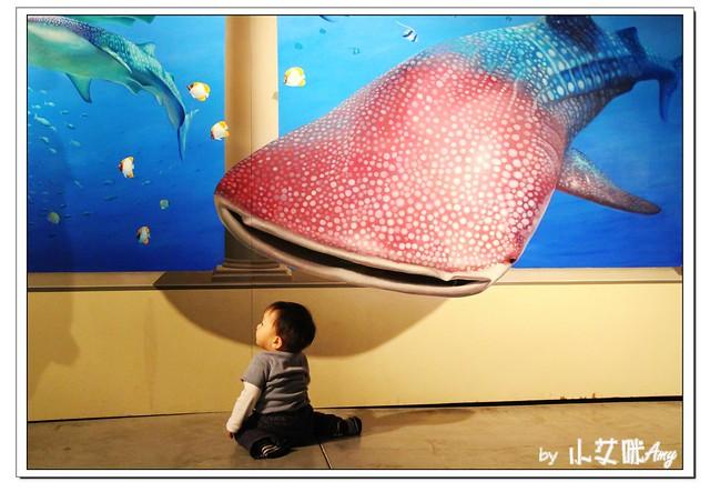 [3D展]高雄駁二藝術特區奇幻不思議日本3D幻視藝術畫展IMG_8025