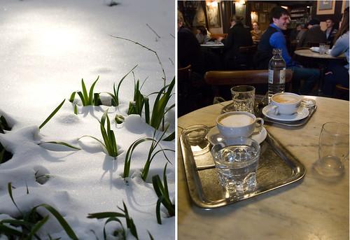 Nieve y café