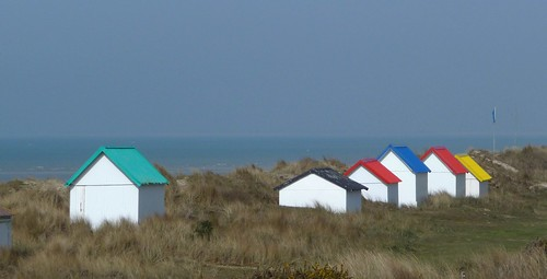 Color along the shore