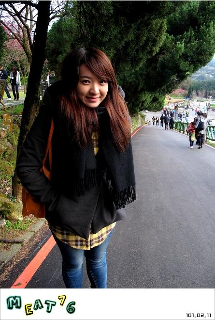 【遊記】陽明山國家公園|櫻花乍現在粉紅意境的花花世界08