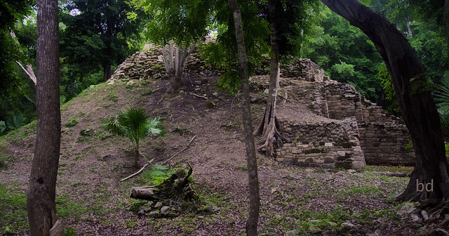 Mayan Temple in Oxtankah