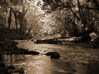 River Waverly Dartmoor
